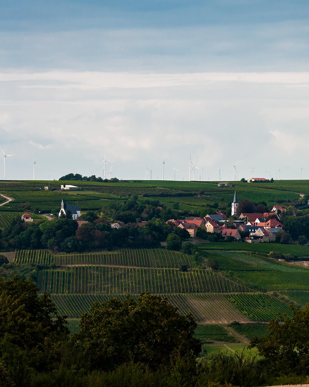 Zellertal-Panorama entlang der Panoramastraße zwischen Zell und Mölsheim im Zellertal