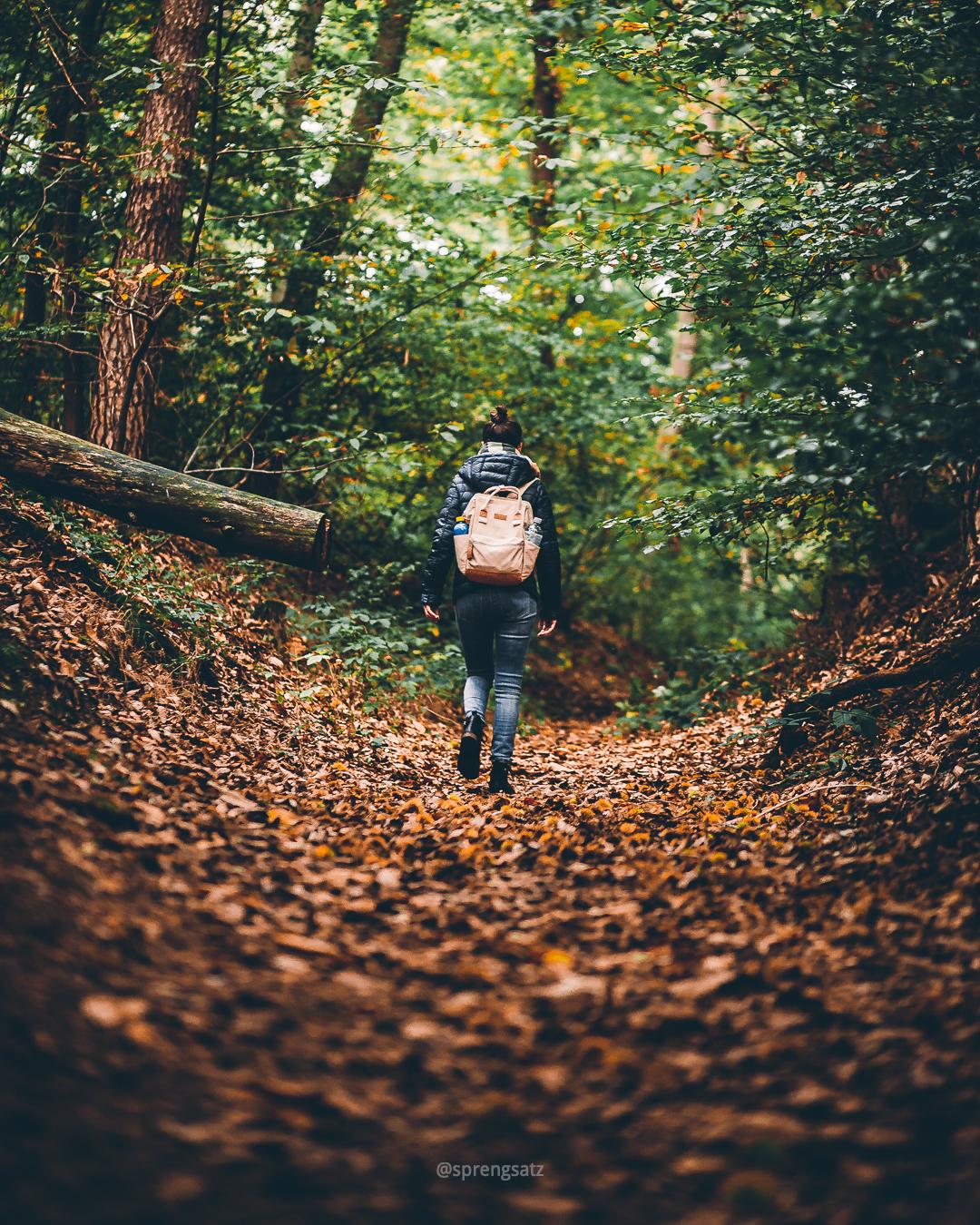 Frau bei einer Wanderung im herbstlichen Göllheimer Wald