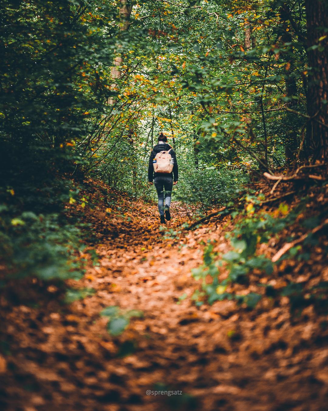 Frau mit Rucksack wandert durch den Göllheimer Wald